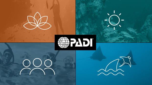 PADI: A Force for Good