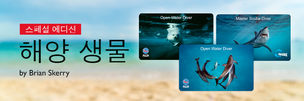 PADI Limited Certification Cards
